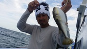 9月21日 河豚 釣果