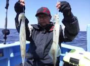 3月29日 ヤリイカ船 釣果