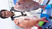 4月10日 テンヤ真鯛船 釣果