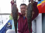 6月11日 午後マゴチ船 釣果