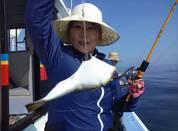 6月18日 ショウサイフグ船 釣果