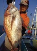 6月18日 午後マゴチ船 釣果 真鯛!7キロ浮上!