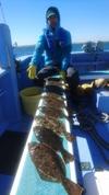 2月11日 ヒラメ船 釣果
