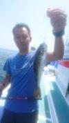 6月10日 ショウサイフグ船 釣果