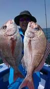 4月28日 テンヤ真鯛船 釣果