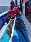 6月2日 マゴチ船 釣果