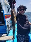 7月1日 マゴチ船 釣果