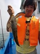 7月22日 マゴチ船 釣果