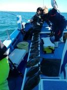 12月18日 ヒラメ船 釣果