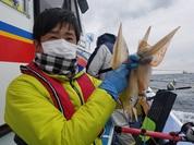 3月29日 ヤリイカ船 釣果 絶好調だよ!!